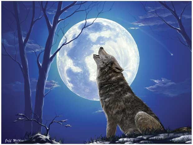 300_lonewolf_image